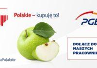 """Kampania PGE """"Polskie – kupuję to!"""""""